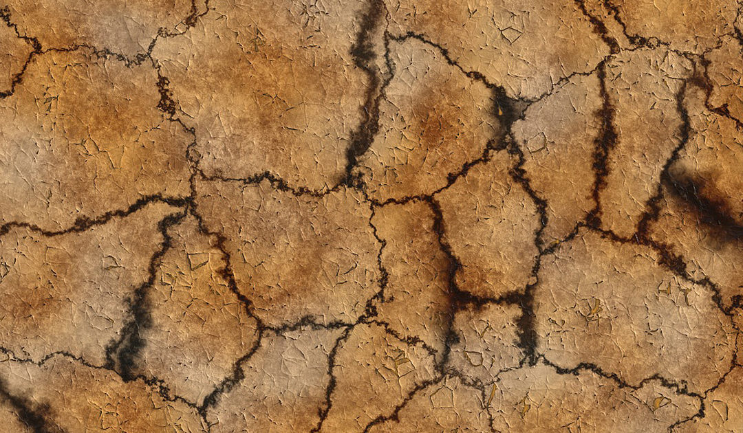 Der Stadtrat ringt um den Klimaschutz